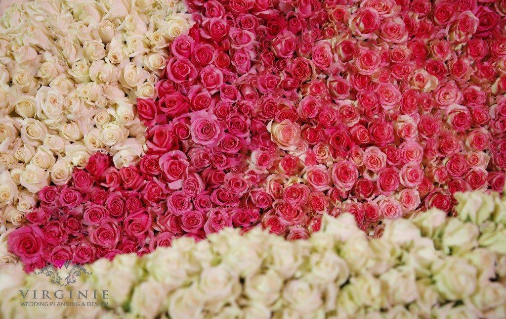 KOSHA – { The hills of love: 1 million roses wedding }